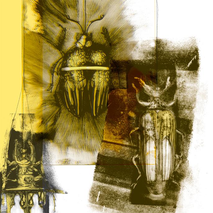 lanternes-egypte-illustration-nathalie-mineau